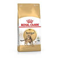 Сухой корм 2 кг для кошек бенгальской породы Роял Канин / BENGAL ADULT Royal Canin
