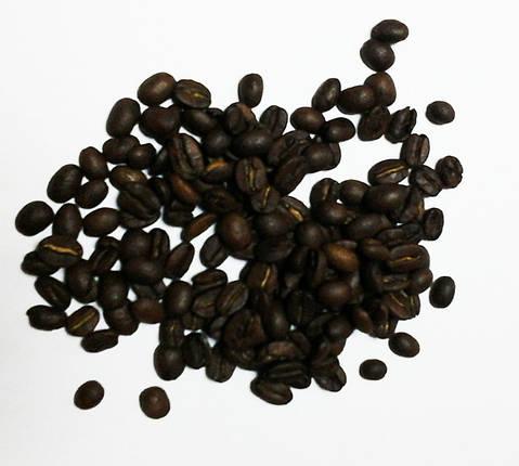 Кофе зерновой Arabica Mexico washed, SHG, Scr 18, фото 2