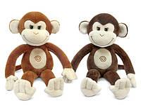 О категории плюшевые обезьяны