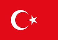 Художественный перевод на турецкий язык