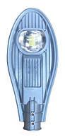 Светильник уличный ДКУ LED Efa М 20Вт 5000К ECO