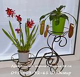 """Підставка для квітів на 2 чаші """"Дует середній"""", фото 2"""