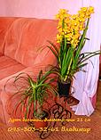 """Підставка для квітів на 2 чаші """"Дует середній"""", фото 4"""