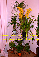 "Подставка для цветов ""Угловая средняя на 7 чаш"", фото 1"