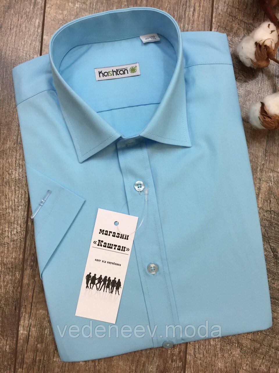 Приталенная рубашка бирюзового цвета с коротким рукавом