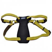 Шлея для собак c нагрудником, Coastal K9 Explorer, нейлон, 2,5смХ50-75 см