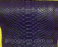 Питон натуральный т.фиолетовый, фото 1