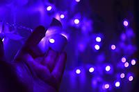 """Новогодняя светодиодная гирлянда дождик (штора, занавес) """"Дивная красотка"""""""