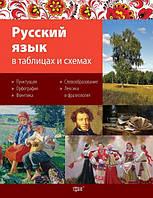 Таблицы и схемы. Русский язык в схемах и таблицах