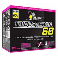 Повышение тестостерона Olimp Labs Tribusteron 60 (120 капсул.)