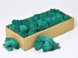 Мох стабилизированный ягель для фитостен Голубой с зеленым 100грамм