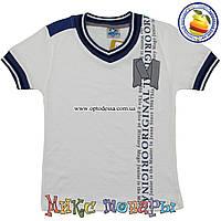 Стильные Турецкие футболки для пацанов от 2 до 8 лет (4287-4)