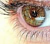 Зрение-восстановление-профилактика заболеваний