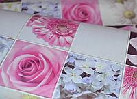 Обои, цветы, крупный рисунок, розовый, влагостойкие,бумажные,B56,4 Соцветие 8081-06, 0,53*10м