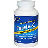 North American Herb & Spice Co., Purely-C, чистый витамин С, 700 мг, 90 капсул