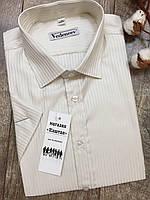 Мужская рубашка бежевая полоска