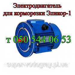 Двигатель для Эликор-1