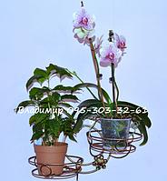 "Подставка для цветов ""Круг"" на 2 чаши, фото 1"