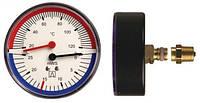 """Термогидрометр AFRISO ТН корпус Ø80, давление 0-60 м вод. ст., от 20 до 120 °C, соединение 1/2"""" аксиальное"""