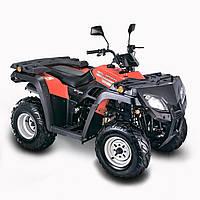 Квадроцикл Skybike Expert 250 (4x2), фото 1