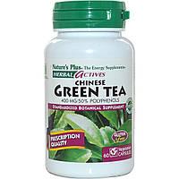 Natures Plus, Травяные активные вещества, китайский зеленый чай, 400 мг, 60 растительных капсул