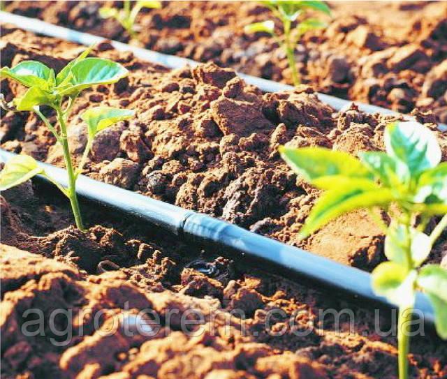 Система капельного полива растений в теплице, купить