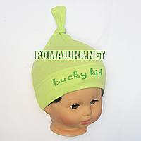 Детская трикотажная шапочка р. 46 для новорожденного отлично тянется ТМ Sweet Mario 3648 Зеленый