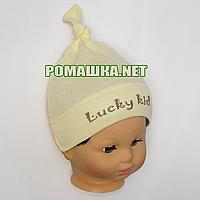 Детская трикотажная шапочка р. 40 для новорожденного отлично тянется ТМ Sweet Mario 3648 Желтый