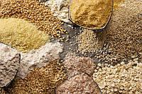 Пшеница стала дешевле