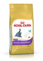 Royal Canin KITTEN BRITISH SHORTHAIR (КОТЯТА БРИТАНСКОЙ КОРОТКОШЕРСТНОЙ ДО 12 МЕСЯЦЕВ) 2КГ