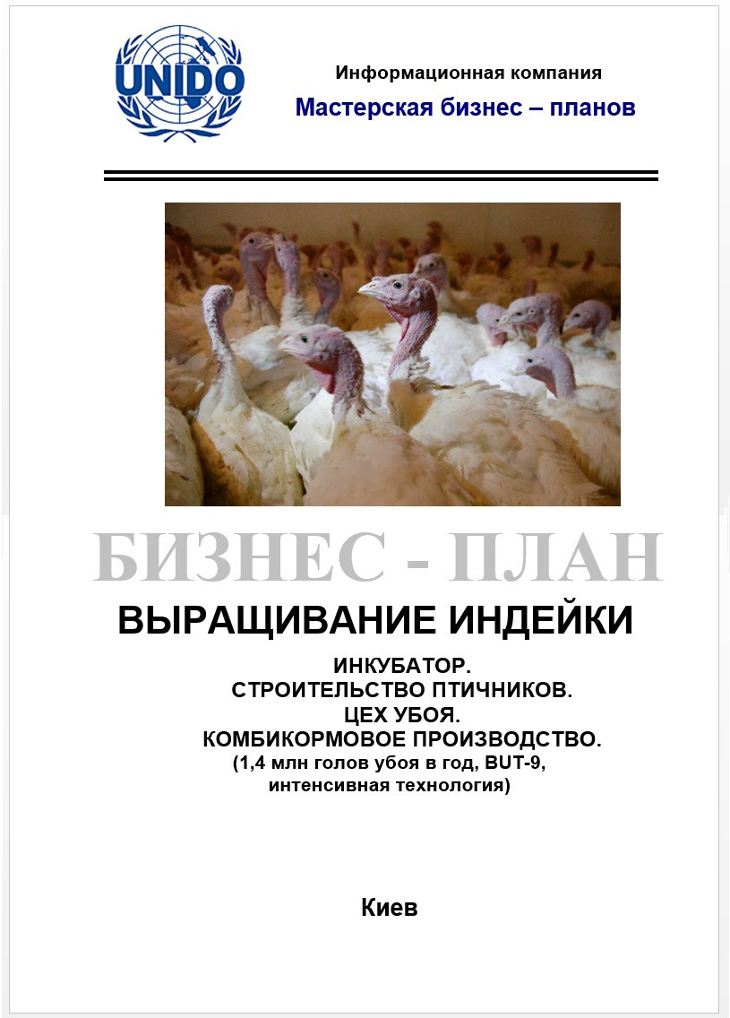 Бизнес план ТЭО Выращивание индейки Комплекс Птицефабрика  Индейка Птицефабрика ферма
