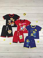 Костюм комплект летний Лидер для мальчика, футболка и шорты, хлопок, р.р.28-34
