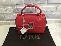 Модная женская сумка Dior красная 787K