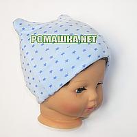 Детская трикотажная шапочка р. 40 для новорожденного отлично тянется ТМ Свит марио 3649 Голубой