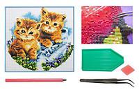 Мозаика алмазная 5D Два котенка 36*36 см.
