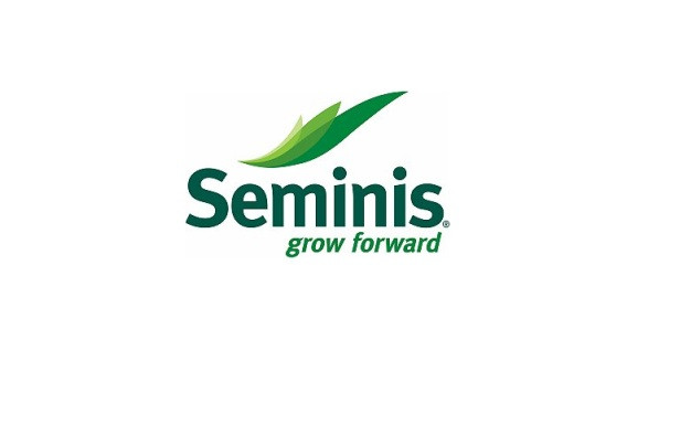 Насіння від Seminis (Семініс, Ісіда 2012)