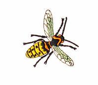 Аппликация клеевая вышитая 7*6,5 см, Пчела