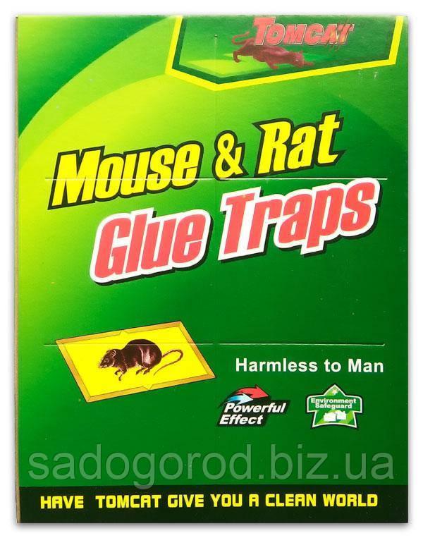 Клеевая ловушка от крыс и мышей зеленая большая  размер 32*21
