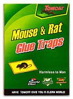 Клеевая ловушка от крыс и мышей зеленая маленькая  размер 12*17
