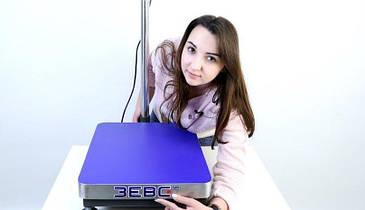Товарные весы ЗЕВС ВПЕ-150-1(L0405)  А12E 400х500