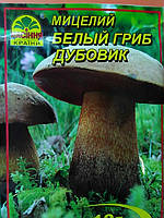 Мицелий Белого гриба (Дубовик)