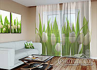 "Фото тюль ""Белые тюльпаны"" (2,5м*3,9м, карниз 3,0м)"