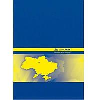 Книга канцелярская Buromax А4 192 листа ламинированный переплет клетка (BM.2404)