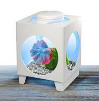 Tetra аквариум для петушка Betta Projector