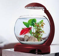 Tetra аквариум Cascade Globe бордо 6,8 л