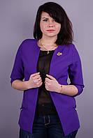Омега. Жакет женский. Пурпур., фото 1