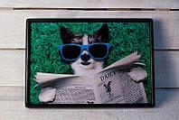 Поднос на подушке 015 собака в очках
