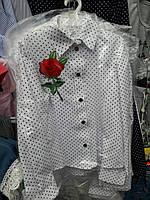 Нарядная блуза  на девочку, Польша