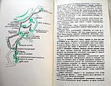 Экскурсионные маршруты экскурсионных бюро Литовской ССР. 1972 год, фото 5