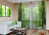 """ФотоТюль """"Зеленый бамбук"""" (2,5м*3,75м, на длину карниза 2,5м)"""